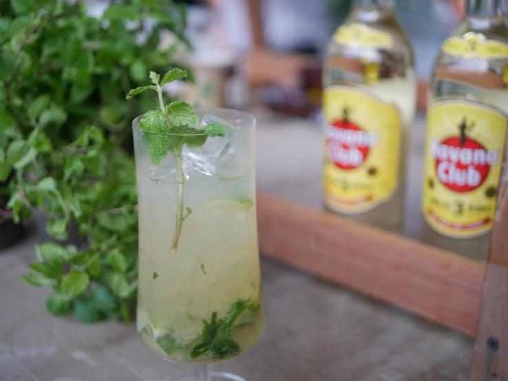 Rum Cocktail - Mojito